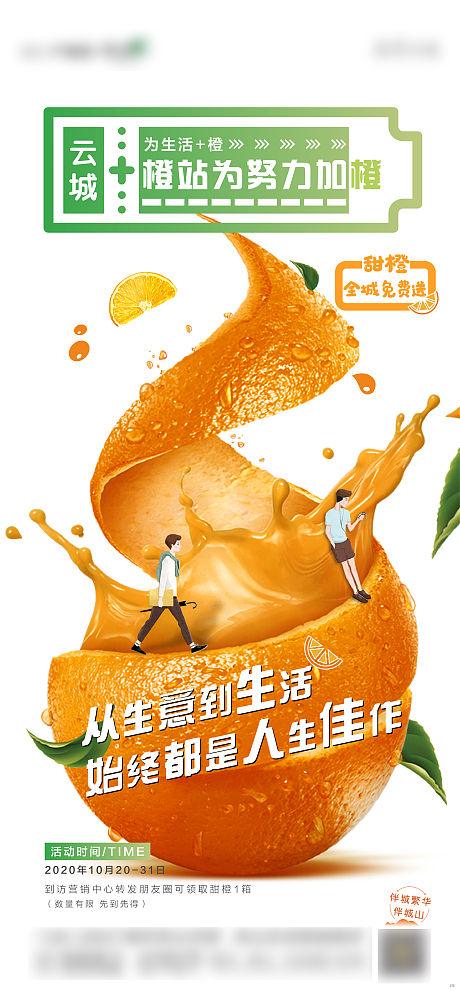 地产送橙子单图